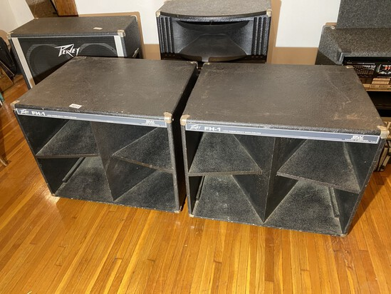 Vintage Peavey FH-1 Speakers Pair