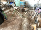 Vintage Schwinn Breeze Bike
