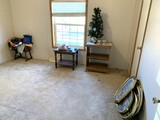 3 Wood Stands, Christmas Tree, Frames & More