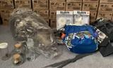 Halloween Items, Bingo Bag, Stuffed Animal Platypus & More