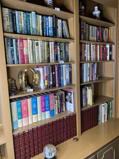 Large lot of books on shelves