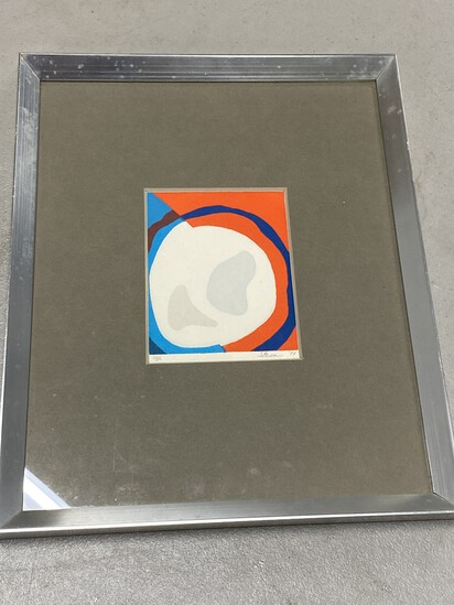 Vintage Op Art Multi Color Screen Print in Frame