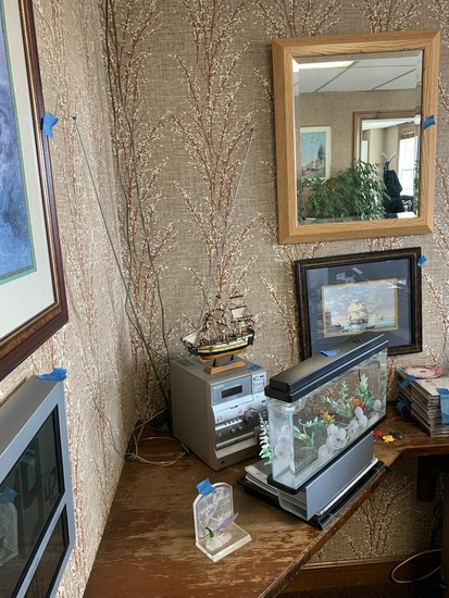 Mirrors, Framed Art, Fake Fish Electric Aquarium, Plant & More