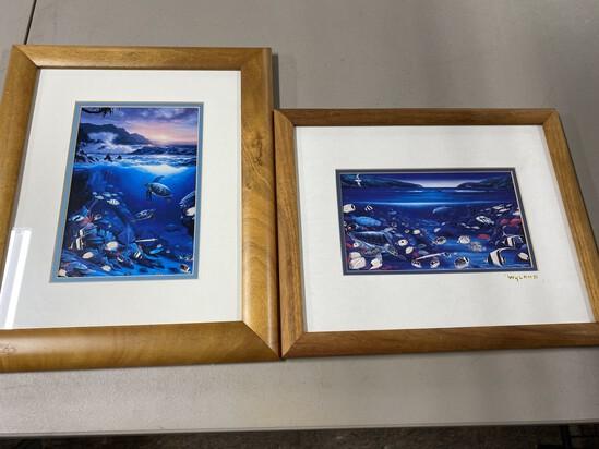 2 framed marine illustrations by Wyland