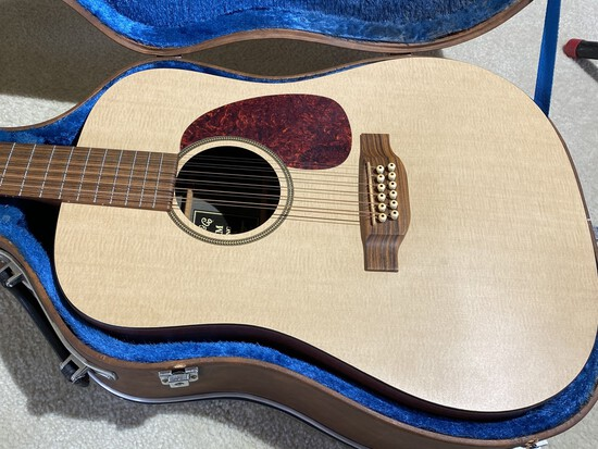 Vintage Martin 12 String Acoustic Guitar Made in USA