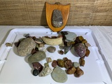 Collection of Rocks, Polished Rocks and a Piece of Bone.