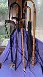 4 Canes and Umbrella