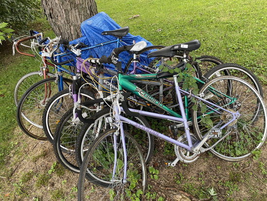 Group of 6 bicycles - Mostly Schwinn