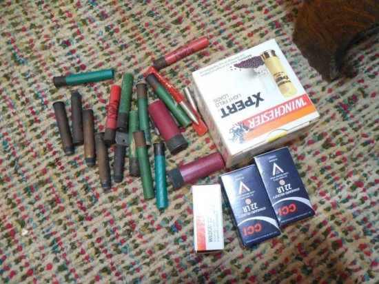 Lot Of Old Ammo Inc. Large Brass Cartridge Rounds
