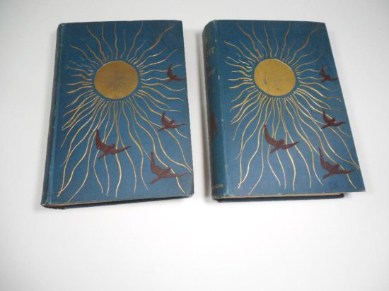 2 Rare Books - Land of Midnight Sun 1881 Vol I II