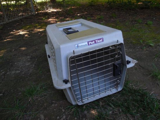 Pet Taxi Small Dog or Cat transport Cage