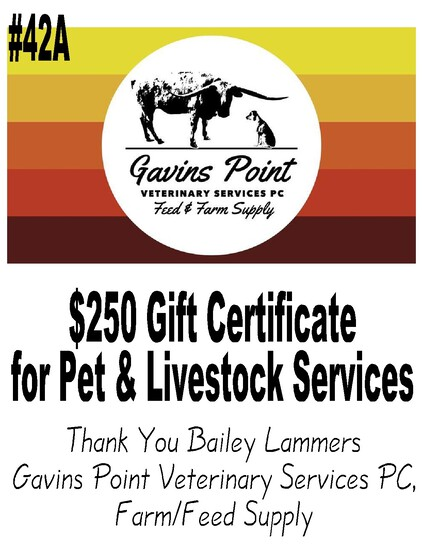 Gavins Point Veterinary Services PC, Farm/Feed Supply  -- $250 Gift Certificate