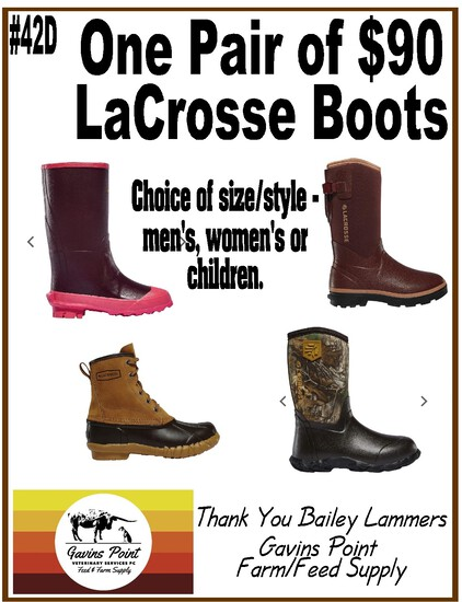 One Pair of $90 LaCrosse Boots