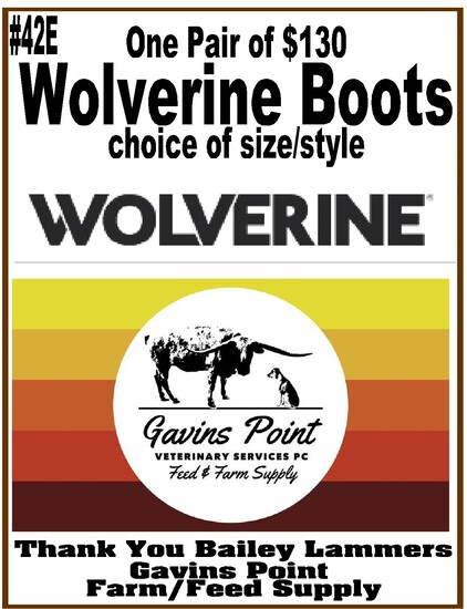 One Pair of $130 Wolverine Boots