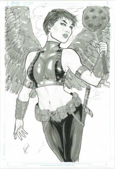 Hawkgirl by Gardenio Lima