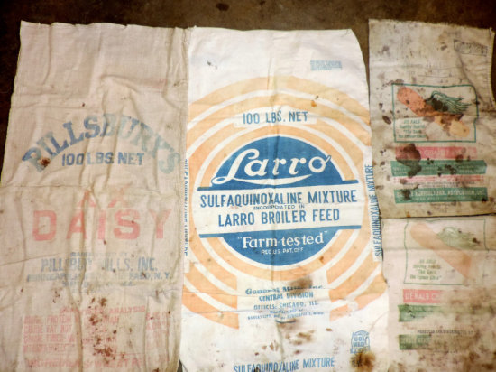 Primitive Adv. Bags