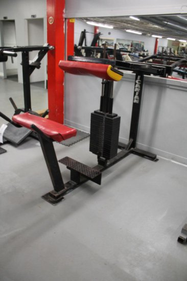 Icarian Bent Over Calf Machine With 400lbs Of Weight