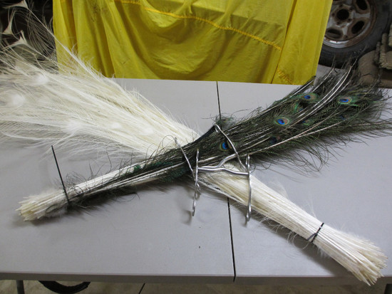 2 Horse Bits, 100  Peacock Feathers