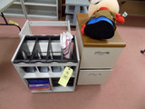 Two-Drawer Metal File and 2 Roller Carts