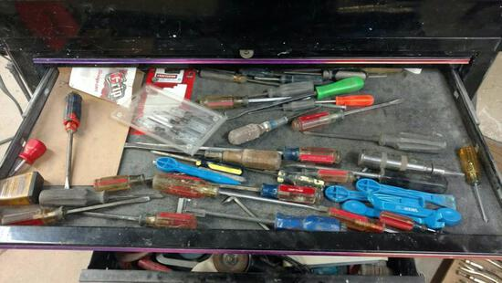Contents of tool cabinet base including screwdrivers, flange puller, body tools, and Sanders.