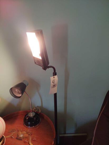 Desk Lamp & Floor Lamp