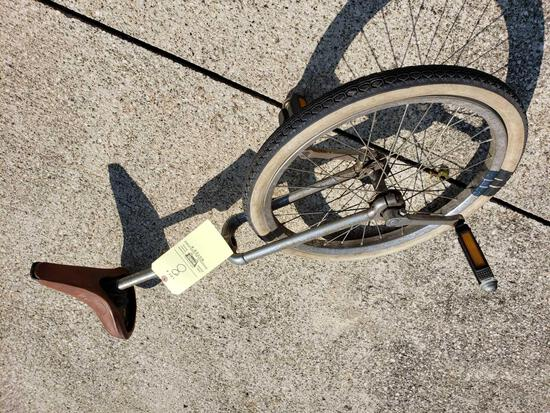 Mesinger Unicycle