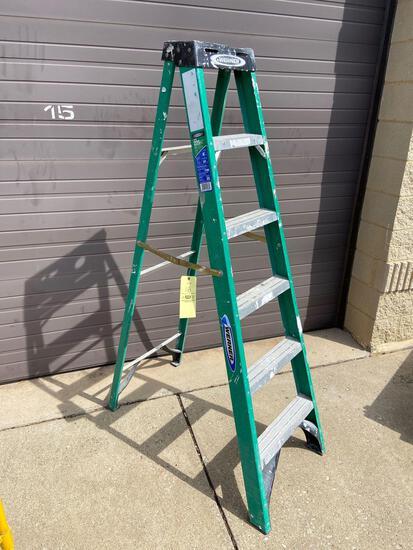 6' Werner Ladder