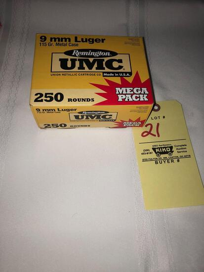 Remington UMC 9mm Luger (250 rounds)