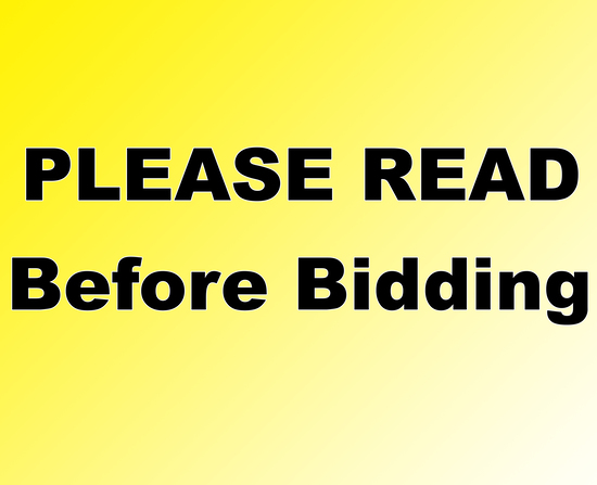 NO SHIPPING - PLEASE READ BEFORE BIDDING!