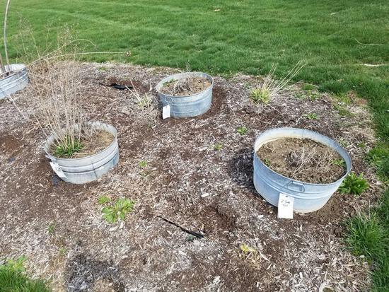 4 galvanized wash tub planters