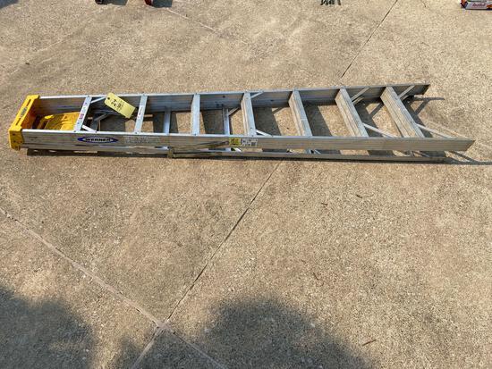 Werner 8 Ft. Ladder