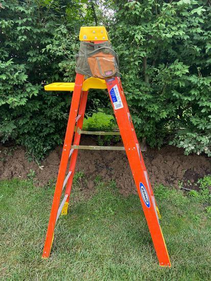 Werner 6 Ft. Ladder