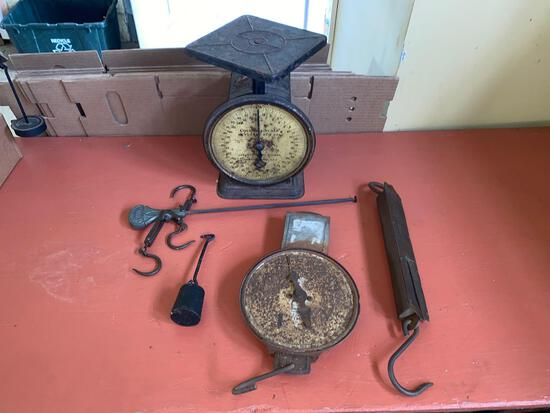 Royal brass front 80 lb scale - counter scale - milk scale