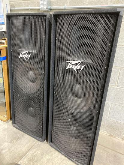 Peavey PV215 PA system speakers
