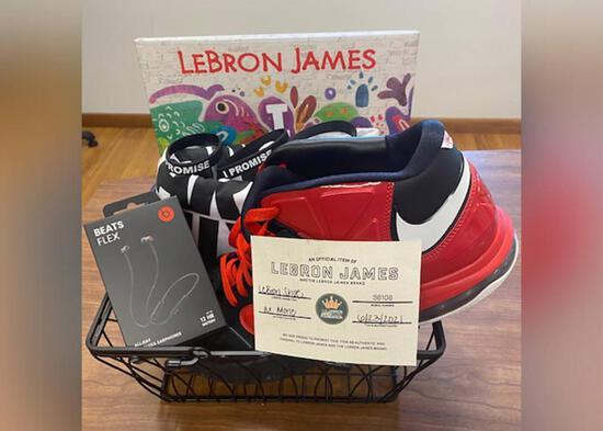 LeBron James Basket