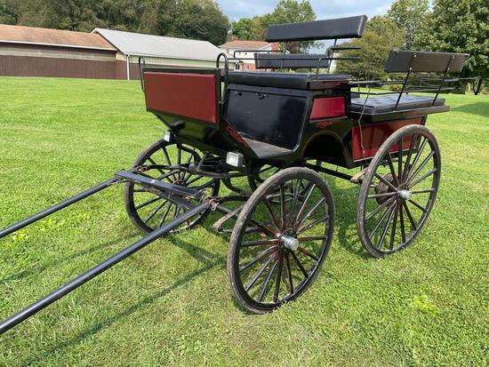 "Horse carriage ""Suri"" voitures Robert & fils"
