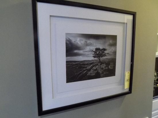 (3) Landscape pictures