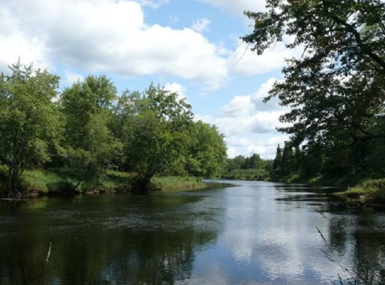 SPORTSMAN'S DREAM! 72+/- Acres in Caribou, Maine!