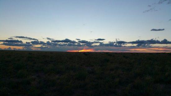 Desert Dreamin'!