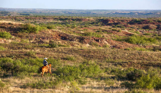 Own Your Own Ten Acre Texas Ranch, Partner!