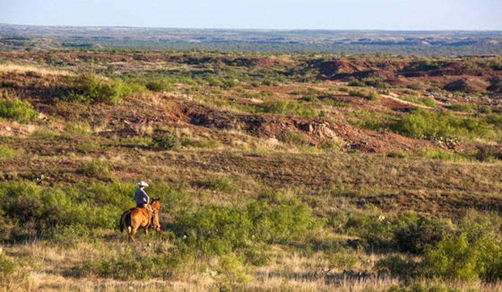 Own Your Own Ten Acre Texas Ranch, Partner!