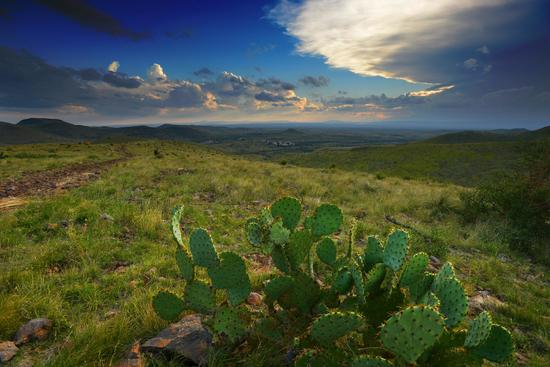 Settle Down on Your Own Texas Ranch between Breathtaking Mountainous Views!