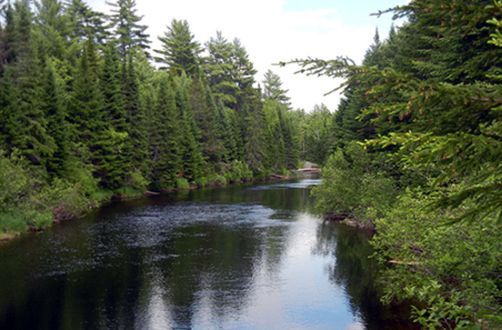 Riverfront Property with Ample Road Frontage! What More Could You Ask For in Serene Maine?