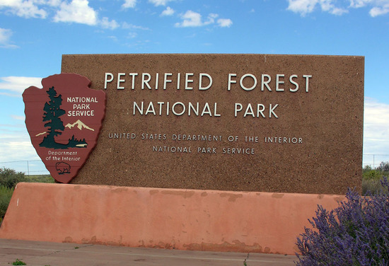 One Acre Near the Petrified Forest National Park!