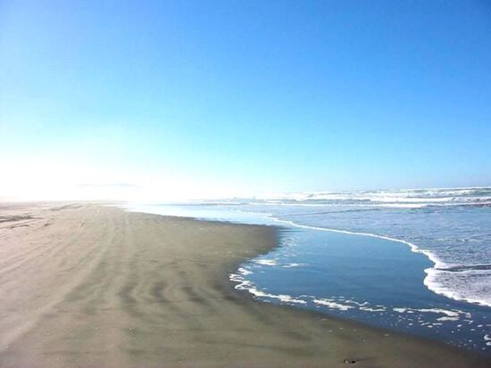 Enjoy the Pacific Beaches - Footsteps Away!