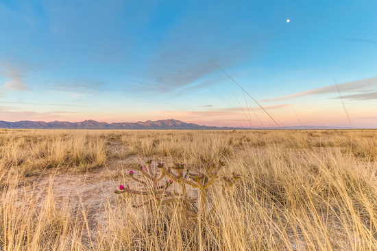 Golf and Gorgeous Views - Prime Location in Cochise County, Arizona