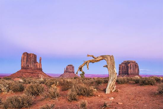 Fantastic Area for Fine Wines in Arizona - Move Over California!