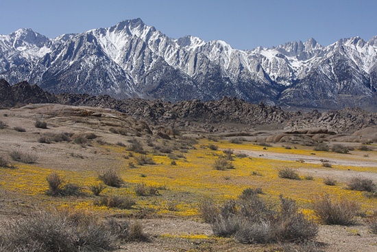 California, Here I Come! 2.5 Acres of Breathtaking Mountain Views!