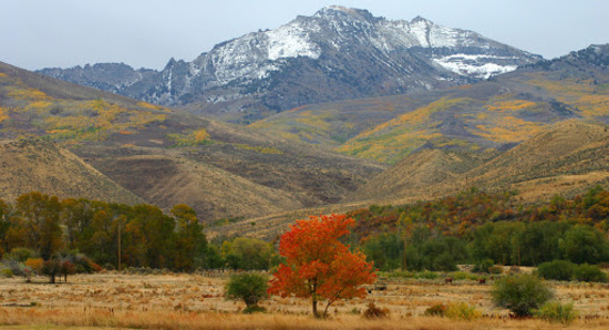 Escape to the High Desert in Elko County, NV! Adjacent to Lot 19!
