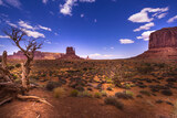 Beautiful Landscapes in Arizona!
